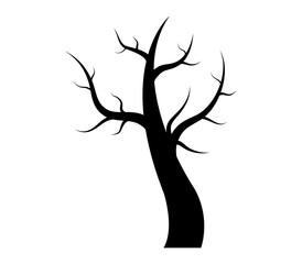 Dry autumn tree