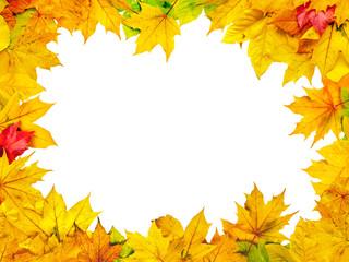 Herbstblätter mit weißem Hintergrund