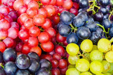 Fototapete - Pile of various kinds of grapes