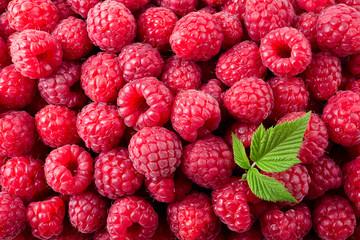 Raspberry. Fresh organic berries macro. Fruit background