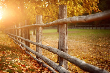 rural wooden fence. natural autumn background