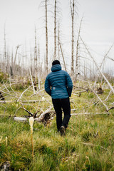Man walking, Glacier National Park, Montana, Canada, United States of America