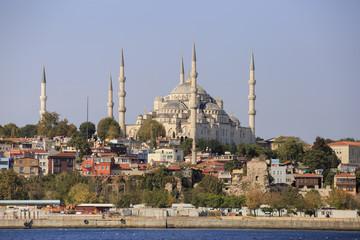 Blue Mosque and Hagia Sophia