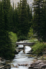 Foot bridge over river, Glacier National Park, Montana, Canada, United States of America