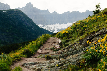 Pathway, Glacier National Park, Montana, Canada, United States of America