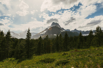 Rocky mountain peaks and forest, Glacier National Park, Montana, Canada, United States of America