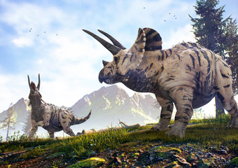 3D rendering of Triceratops horridus roaming a hillside in Hell Creek about 67 million years ago.