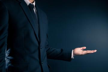 Businessman Presentation on Isolated Background