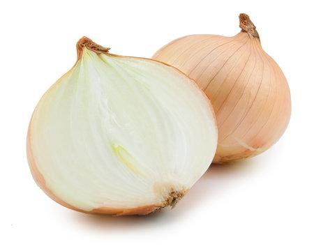 fresh bulbs of onion isolated