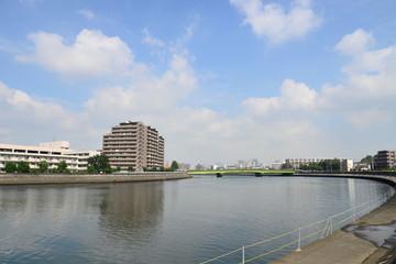 鶴見川と芦穂橋