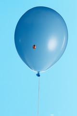 風船と天道虫