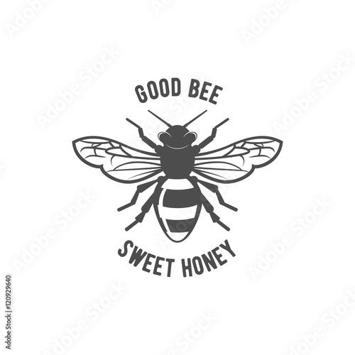 Vintage bee vector