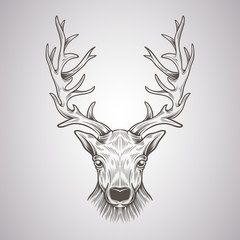 Deer Head in a graphic style
