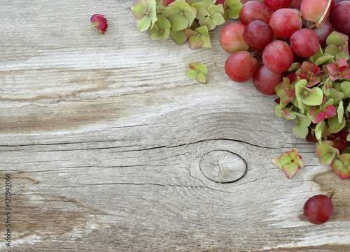 Autumn Natural Rustic Background With Pink Grapes And Green Hydrangea Flowers On A Wooden Board