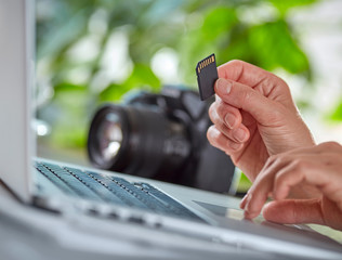 Woman copying photos from camera to her laptop.  Hand with SD ca