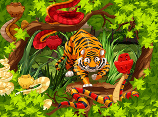 Wild snakes and tiger in the woods