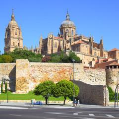 Wall Mural - View of Salamanca