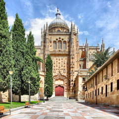 Wall Mural - New Cathedral in Salamanca