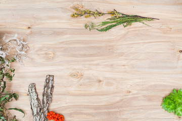Minimal collage composition of the plants at wooden desk