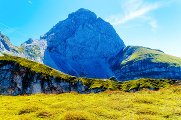beautiful details of alpine mountain landscape on bright summer day.