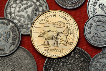 Coins of Nepal. Farmer ploughing with water buffalos