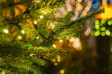 Traditional Christmas Tree lights