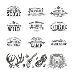 Set of typographic  compositions for t-shirt and design elements