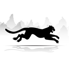 Silhouette Cheetah, Panther, design using black line square, graphic vector.
