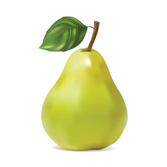 Pear on white background. Isolated. Vector illustration.