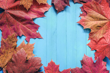Autumn red leaves on a blue wooden background