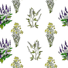 Seamless pattern with various flowers
