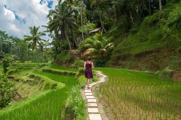 Promenade dans les rizières de Tegalalang, Bali, Indonésie