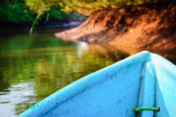 Abstract blurred background  with kayaking in mangrove tunnels, Goa, India