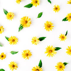 daisy, chamomiles and green leaves pattern. flat lay, top view
