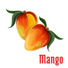Mango fruit icon for food, juice packaging design