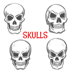 Skulls and skeleton craniums sketch icons