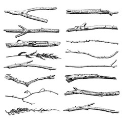 Fototapeta Set of Driftwood, ground floor hand drawn ink rustic design elements collection. Dry tree branches and wooden twigs. Vintage highly detailed classic ink drawings bundle art in engraved style. Vector. obraz