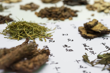 chinese herbs on a recipe, the chinese means Forsythia suspensa & Taraxacum & SPICA PRUNELLAE & Scrophularia ningpoensis