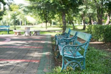 Bench near tree in public park.