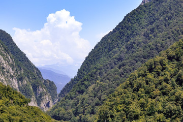 The mountainous landscape of the slopes covered by forest.