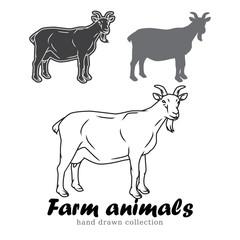 Hand drawn goat silhouette. Farm animals vector illustration.