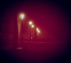 Park in a fog vintage photo halloween