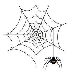 Halloween spider on web