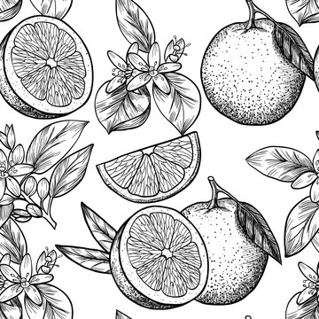 Oranges  and flowers. Vector seamless pattern