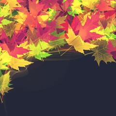 Beautiful Bright Autumn leaves natural background