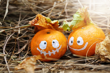 Couple of Halloween oranges, soft focus and color toned.Halloween concept background.
