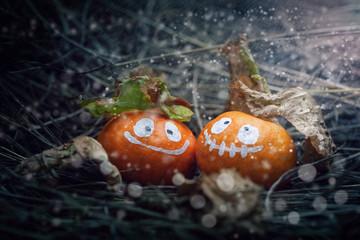Couple of Halloween oranges on  snow.Halloween concept background.