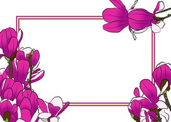 Magnolia blooming tree frame. Vector illustration.