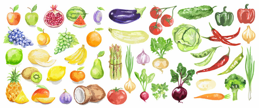 Watercolor fruit and vegetables set. Juicy and colorful fruit on white background including apples, coconut, lime, tomatoes, cucumber and more. Vegetarian diet food with vitamins.