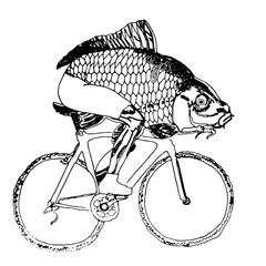 Рыба на велосипеде